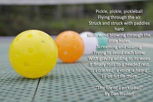 pickleball inspiration