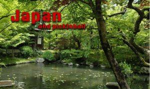 japan and pickleball