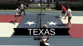 TX USA state graphics